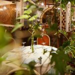 Le Lys d'Or : à la découverte de la haute gastronomie chinoise