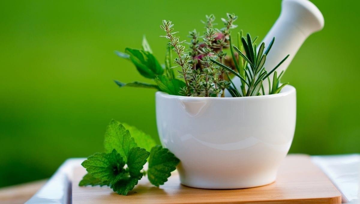 La naturopathie, médecine la plus ancienne. Et la plus efficace?