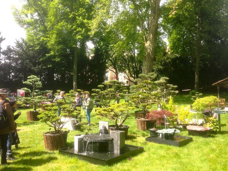 Journée des plantes du Domaine de Chantilly 2017