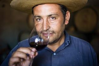 Vin du chili : El Viejo Almacen Renán-Cancino