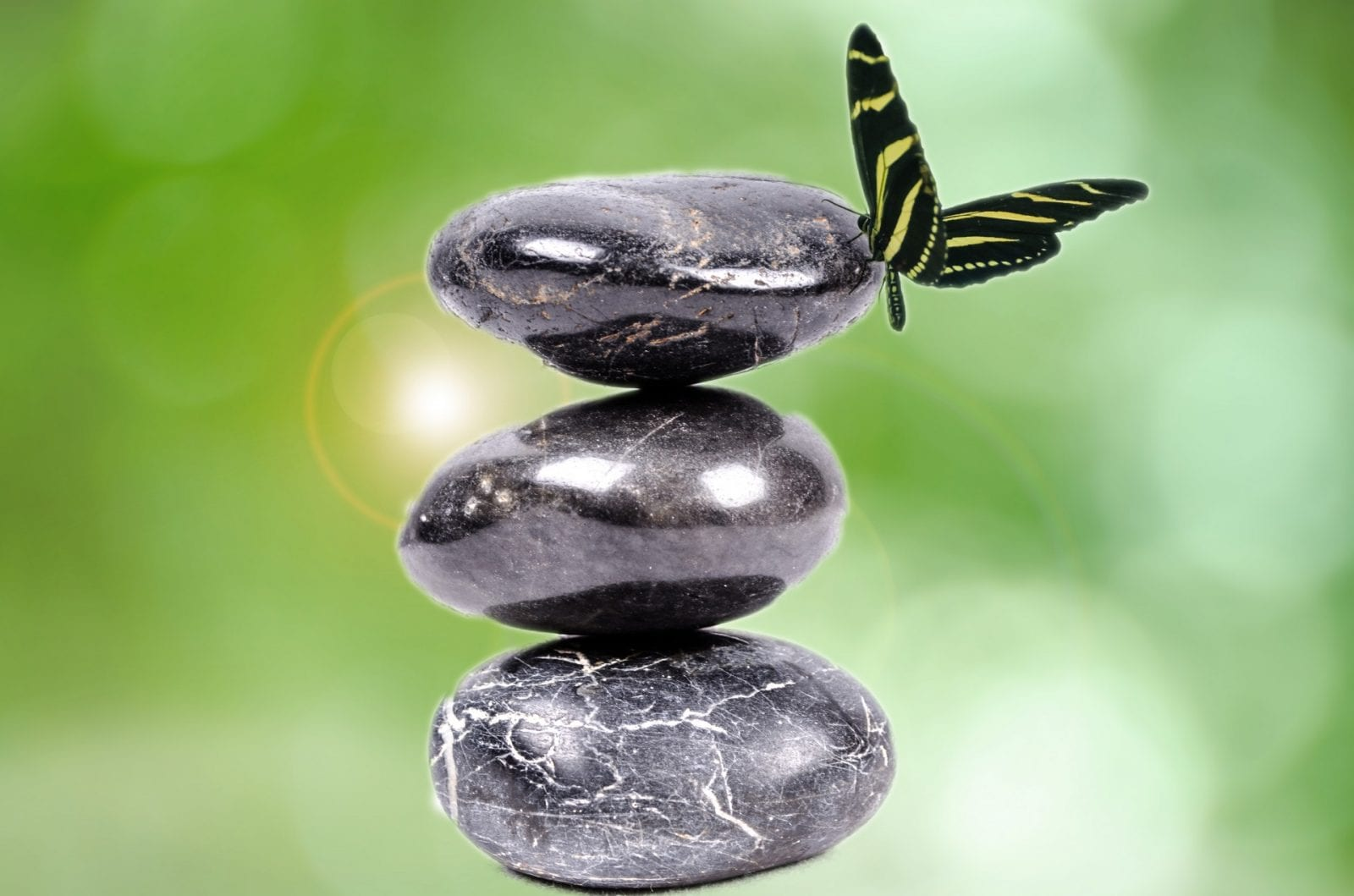 3 pierres en équilibre pour illustrer notre posture. Un papillon vient se poser sur ces pierres, évoquant qu'un petit rien peut nous déstabiliser