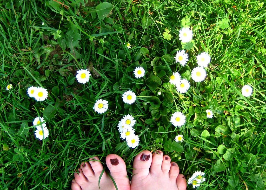 pied nu dans l'herbe
