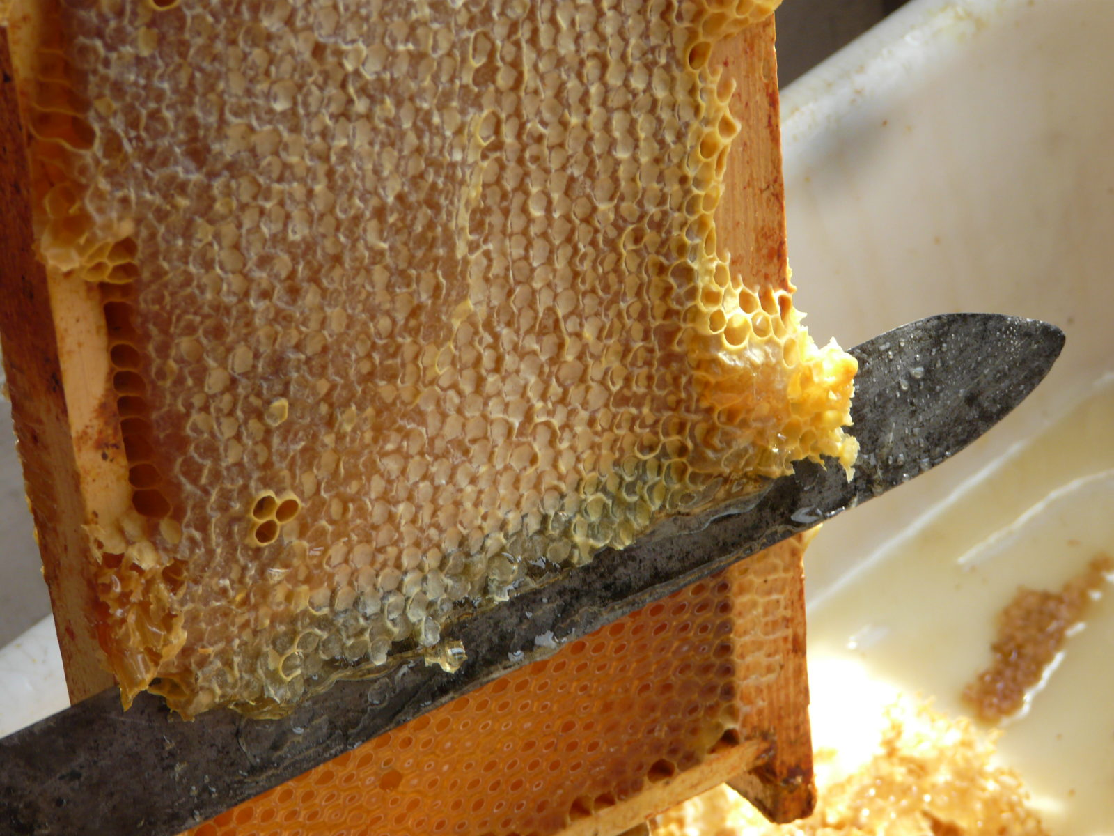 Le miel est lui aussi très controlé avec des labels.