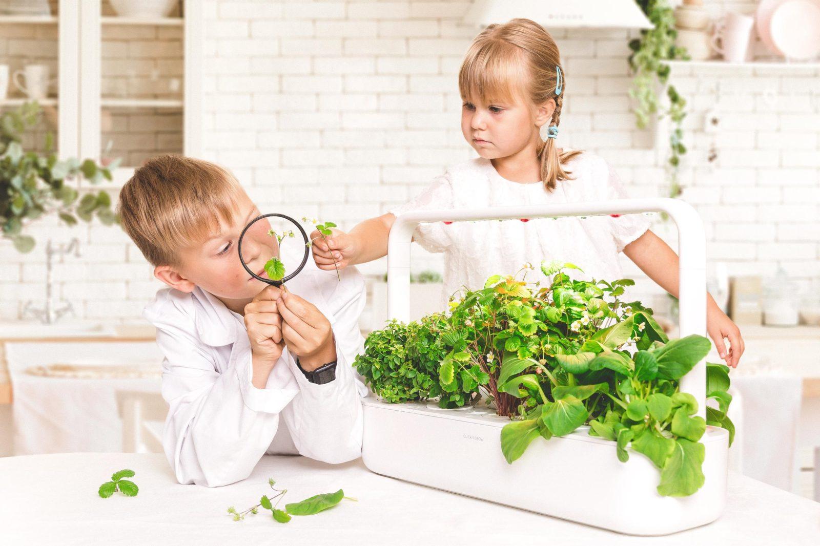 Smart Garden 9