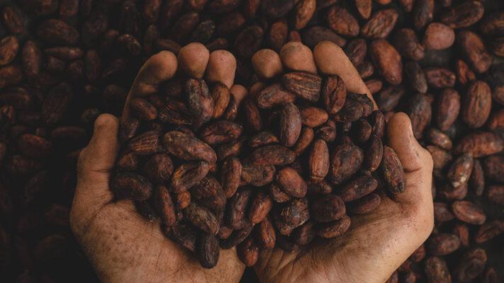 Façon Chocolat : des chocolats bio et végan bons pour la santé