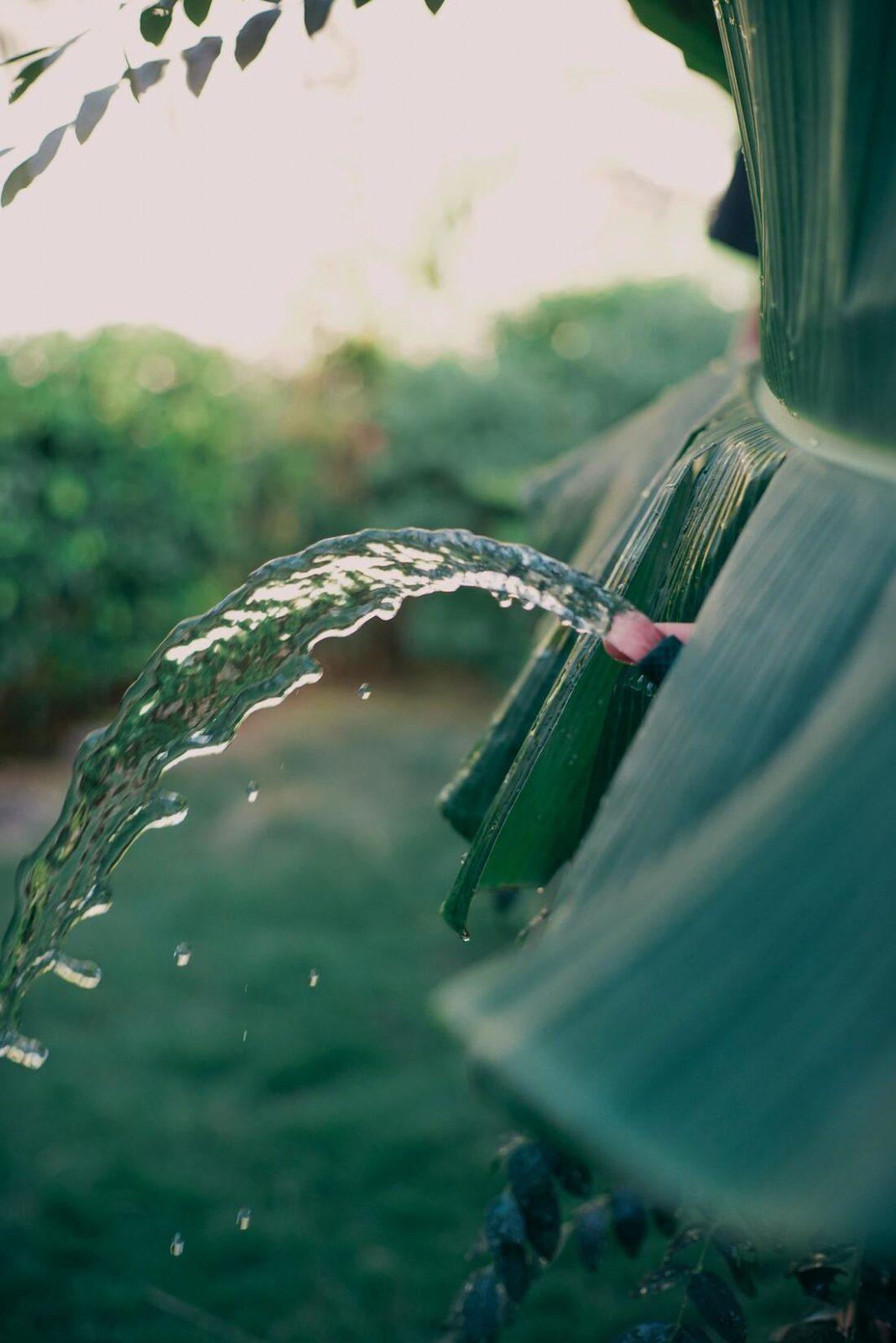 Femme fontaine : éjaculation féminine.