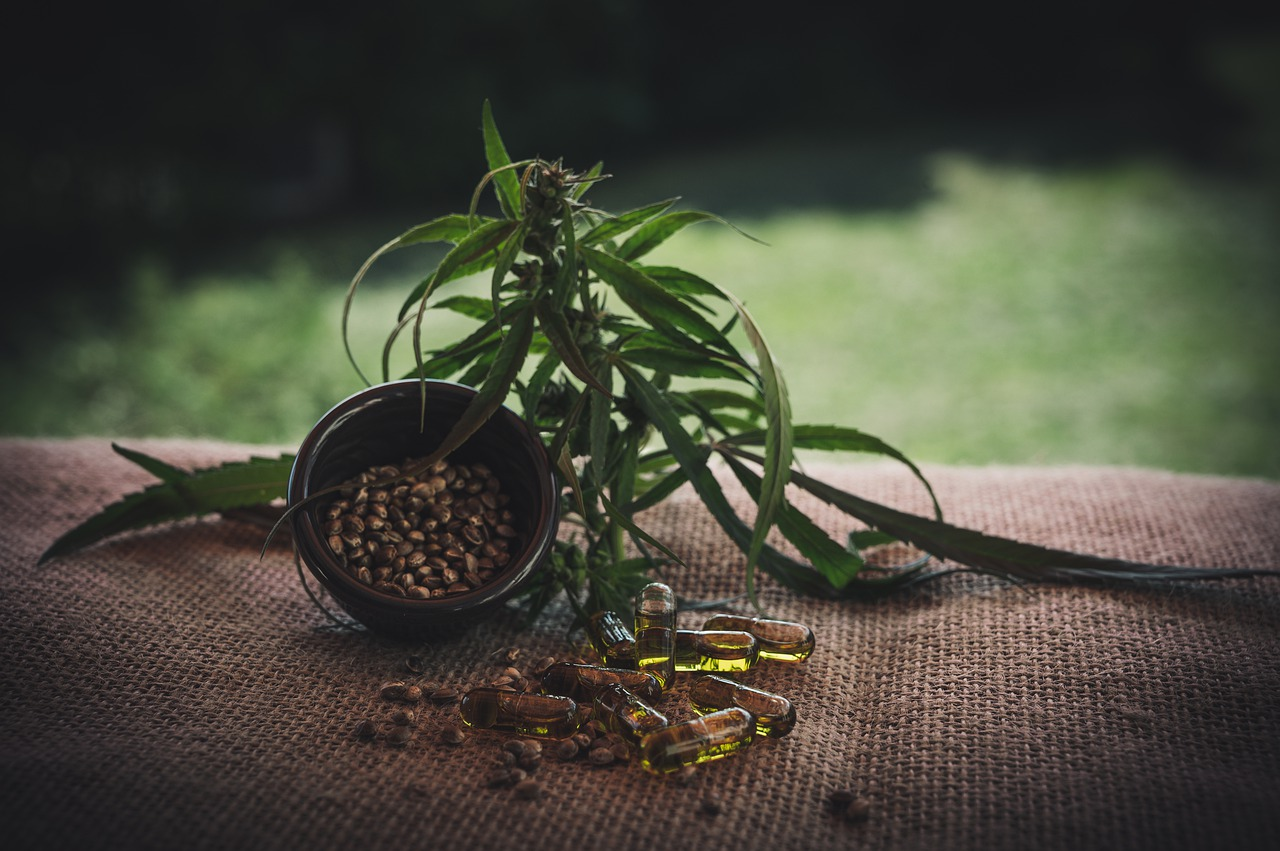 Les graines de cannabis peuvent être achetées en toute légalité