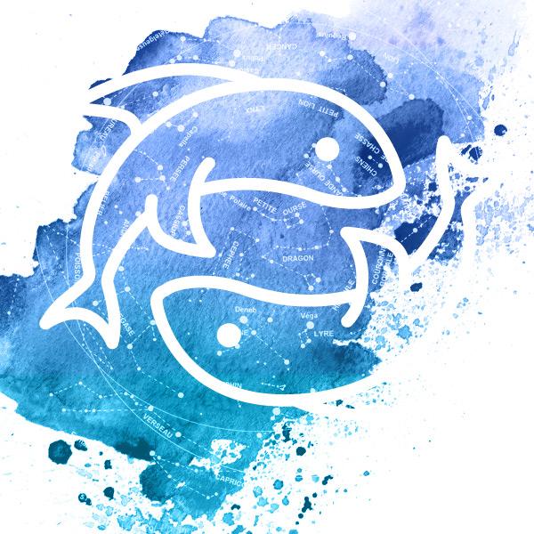 Symbole du poisson avec deux poissons.