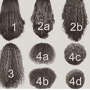 Dessin des différentes natures de cheveux : du plus lisse au plus bouclé.
