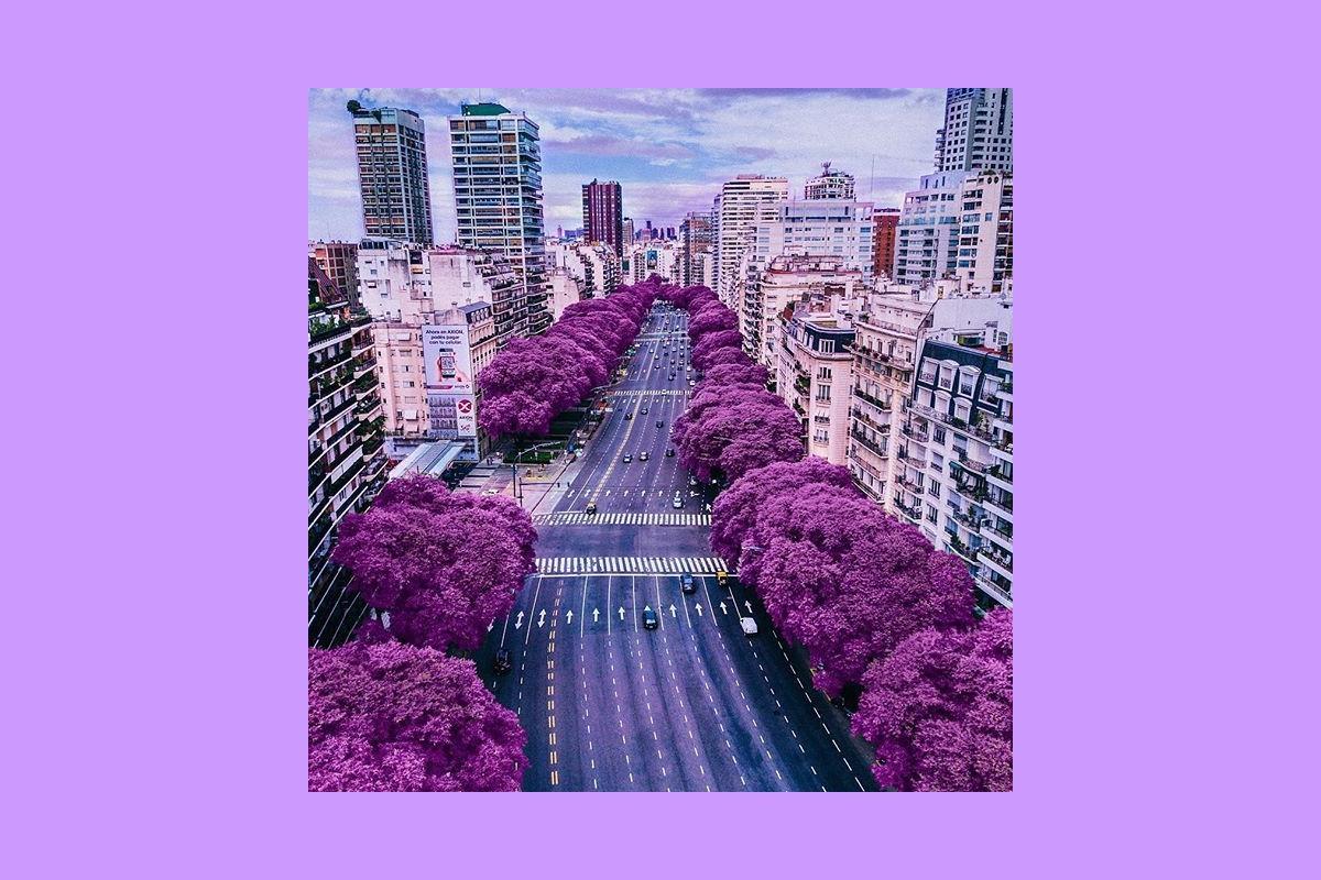 Les cinq lieux incontournables : Buenos Aires © Erasmus