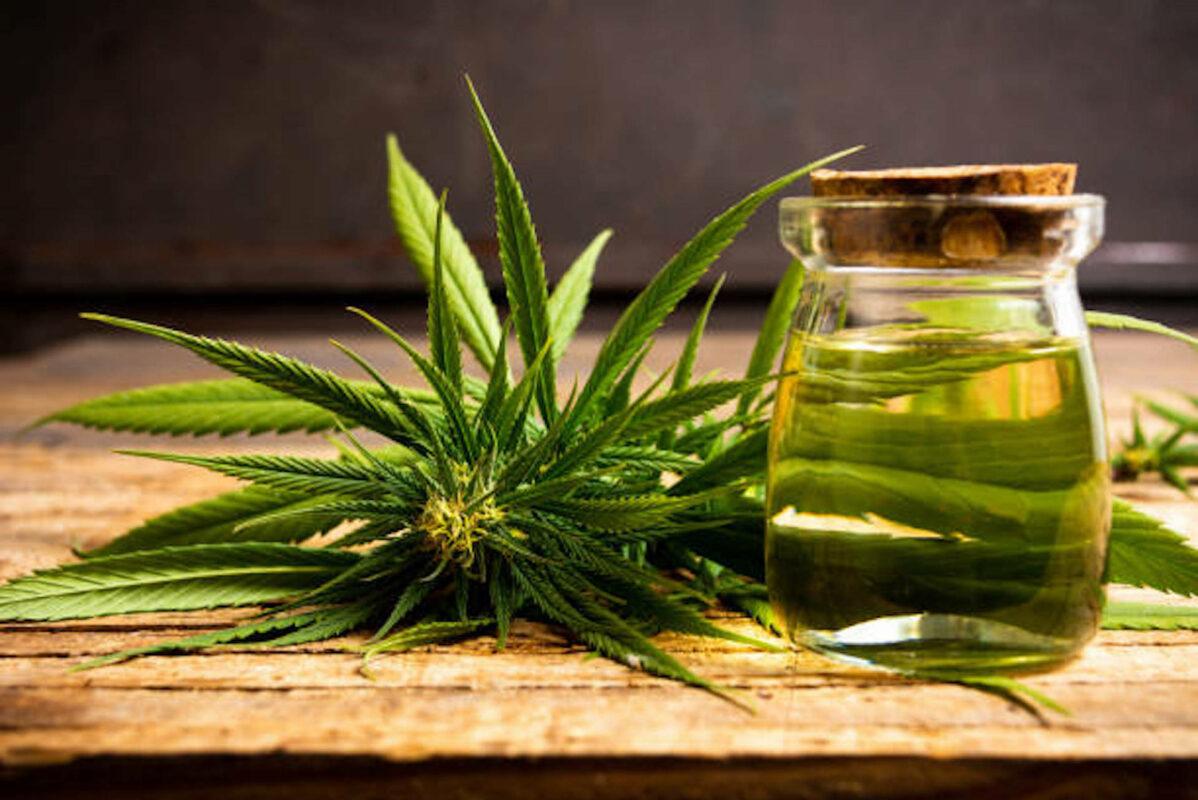 L'huile de chanvre : l'une des huiles végétales les plus nutritives pour les cheveux