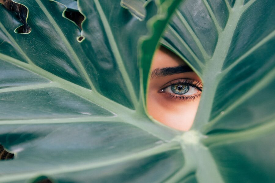 """Orient-All Bio : l'esprit """"Green"""" des cosmétiques orientaux"""