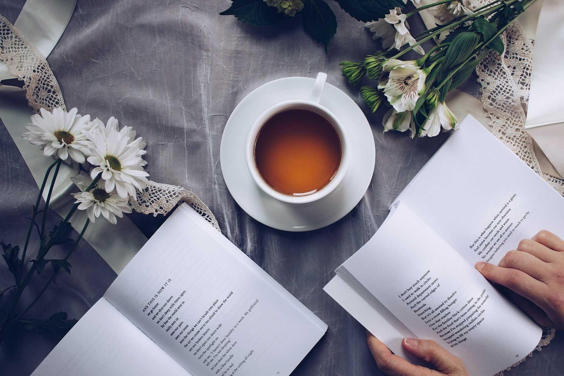 La lecture comme miroir de la société