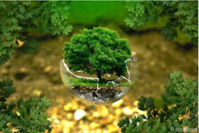 Vers un monde digital, bon signe pour notre environnement